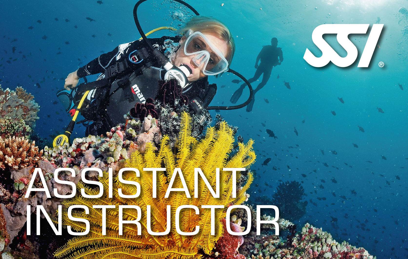 Assistant Instructor Abramar Buceo