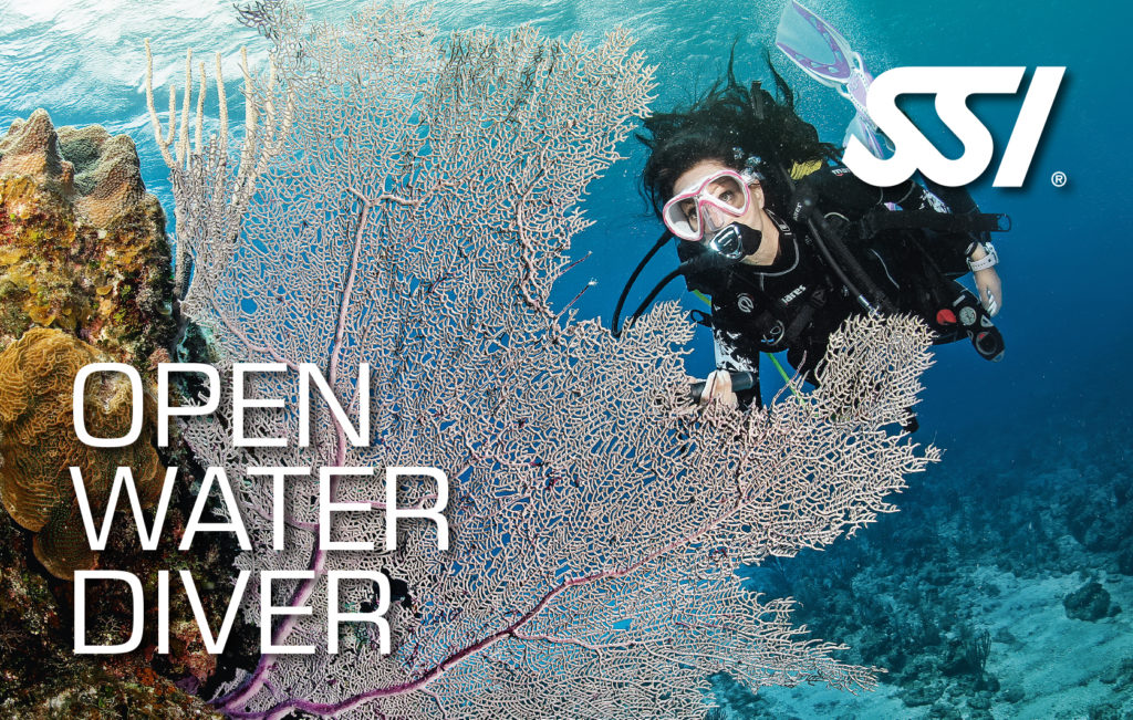Open Water SSI Abramar