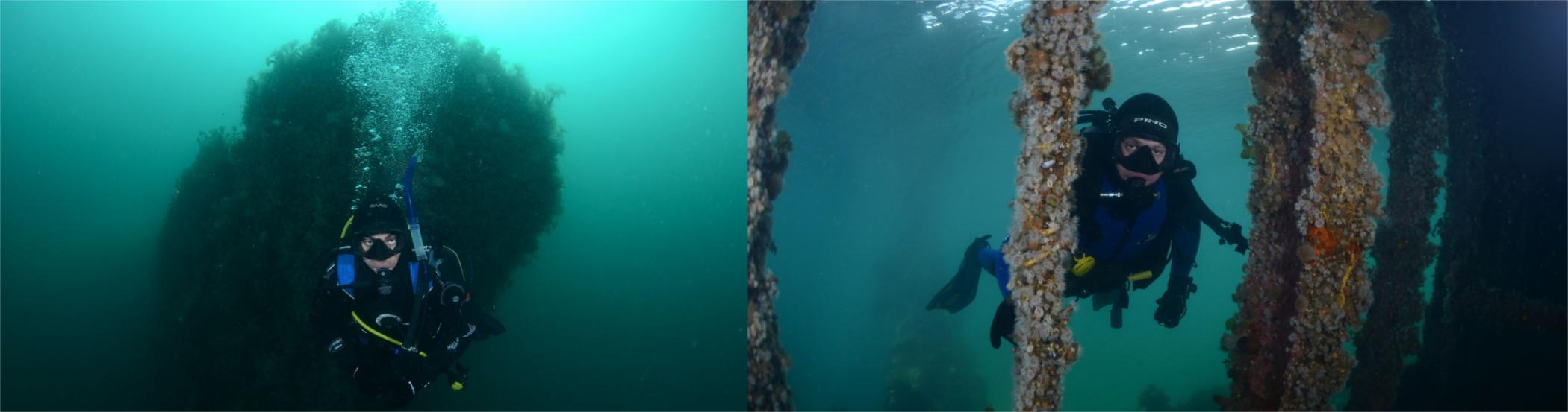 Sitios de buceo Abramar