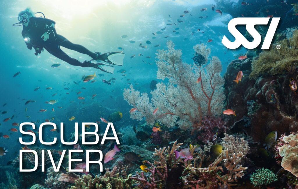 Scuba Diver Abramar buceo Puerto Madryn